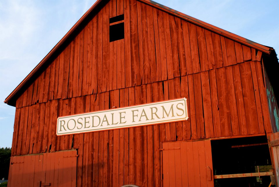 Rosedale Farms
